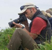 Photographing Puffins 2